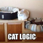cat logic  between beds